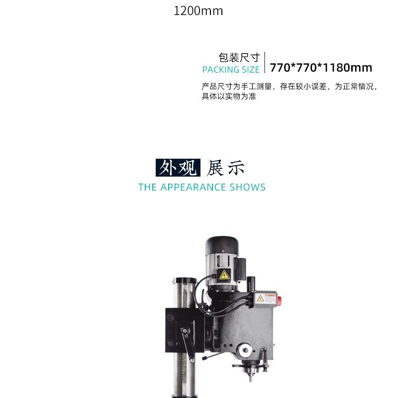 CTZX40-790_05.jpg